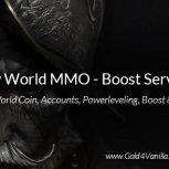 New World Boost Services